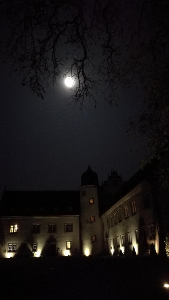 Buchenau_028.jpg